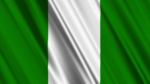 NigeriaFlagLoop01 Stock Video Footage