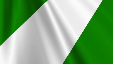NigeriaFlagLoop03 Stock Video Footage