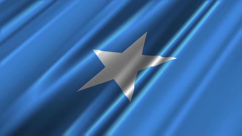 SomaliaFlagLoop02 Stock Video Footage