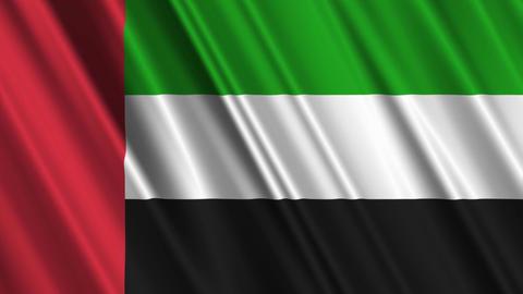 UnitedArabEmiratesFlagLoop01 Stock Video Footage