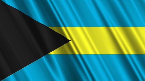 BahamasFlagLoop01 Stock Video Footage