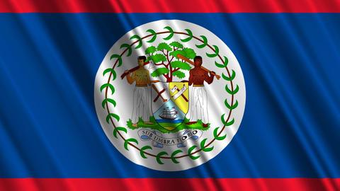 BelizeFlagLoop01 Animation