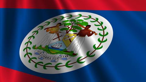 BelizeFlagLoop03 Stock Video Footage