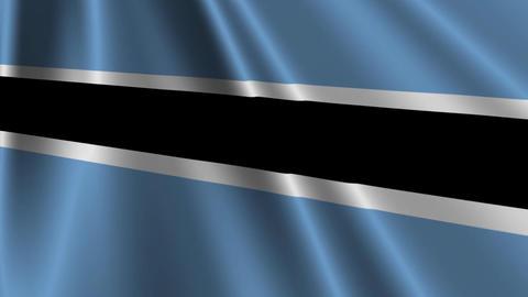 BotswanaFlagLoop03 Stock Video Footage