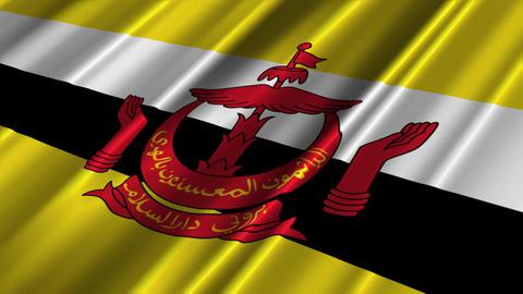 BruneiFlagLoop02 Stock Video Footage
