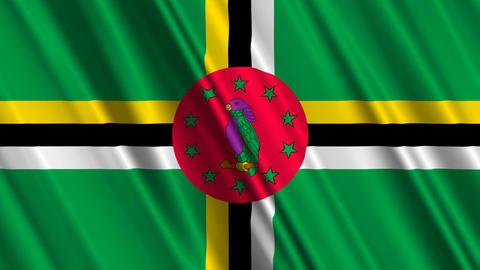 DominicaFlagLoop01 Stock Video Footage