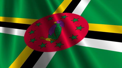 DominicaFlagLoop03 Stock Video Footage