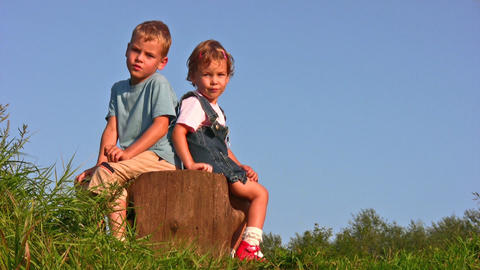 children on stump Stock Video Footage