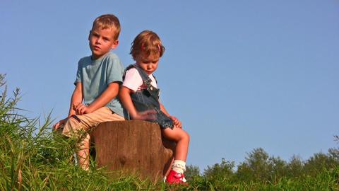 children on stump Stock Video Footage