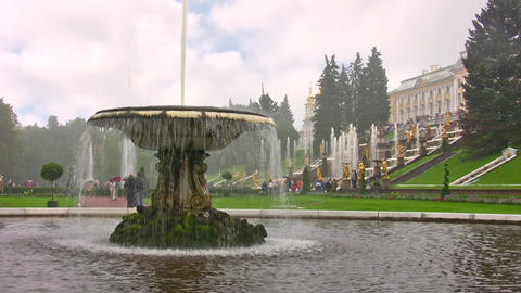 Peterhof. Petersburg Stock Video Footage
