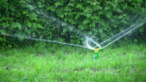 water splash on grass Stock Video Footage