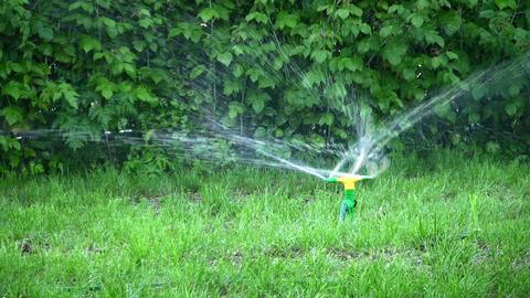 water splash on grass Footage