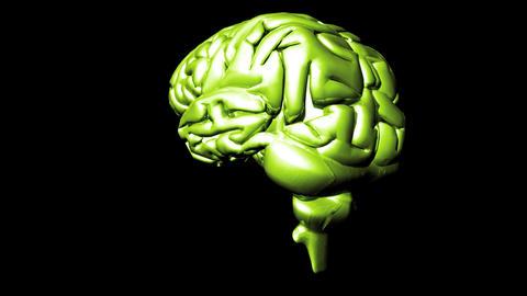 Human Brain 2 stock footage