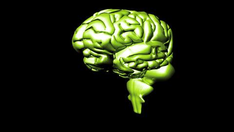Human Brain 2 Stock Video Footage