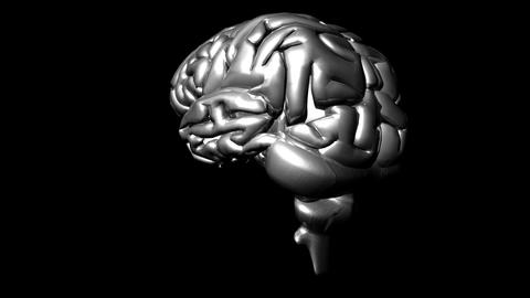 Human Brain 3 Animation