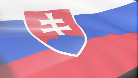Slovak Flag Animation