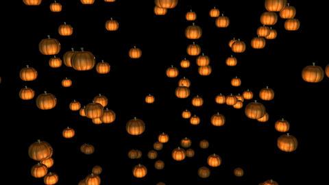 Halloween Pumpkins stock footage