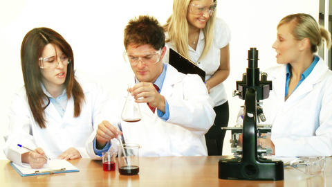 Scientists working in a laboratory and supervisor Footage