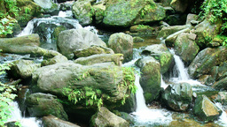 Waterfall on a creek with stones Stock Video Footage
