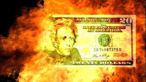 American Dollar Burning Stock Video Footage