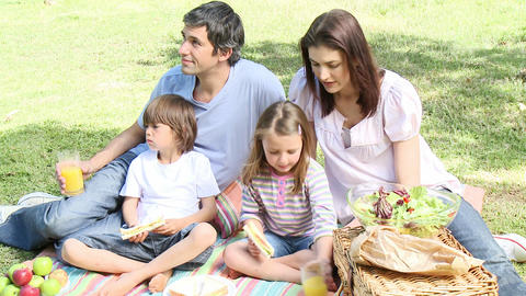 Happy family having a picnic in a park Footage