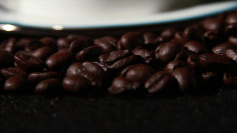 1583 Coffee Beans and Coffee Cup Live Action