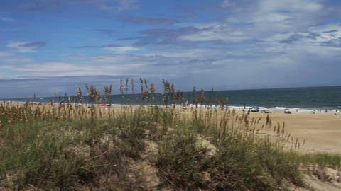1626 Beach with Long Grass Blue Skys and Ocean Wav Stock Video Footage