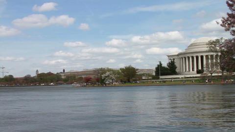 1220 Cherry Blossoms Washington and Jefferson Monu Footage