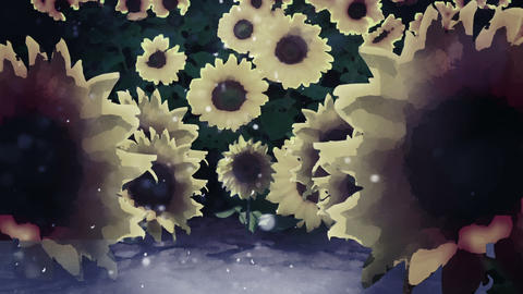Sunflowers at WInter as It Snows, HD Footage