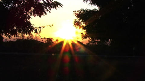 0877 Sunet in Africa Stock Video Footage