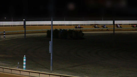 Horses Racing Down the Track in Slow Motion 2 Stock Video Footage