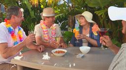 Mature friends taking an aperitif Footage