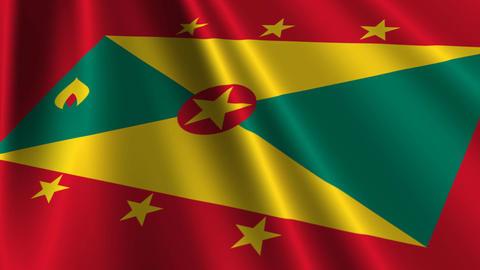 GrenadaFlagLoop03 Stock Video Footage