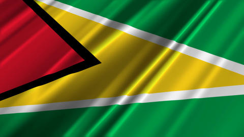 GuyanaFlagLoop02 Stock Video Footage
