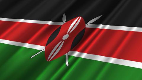 KenyaFlagLoop02 Stock Video Footage