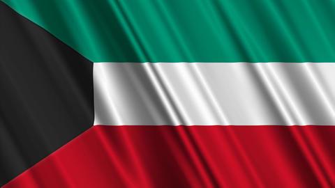 KuwaitFlagLoop01 Stock Video Footage
