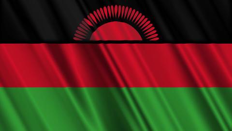 MalawiFlagLoop01 Stock Video Footage