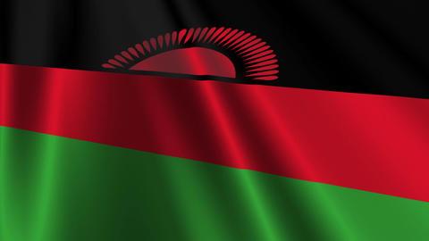 MalawiFlagLoop03 Stock Video Footage
