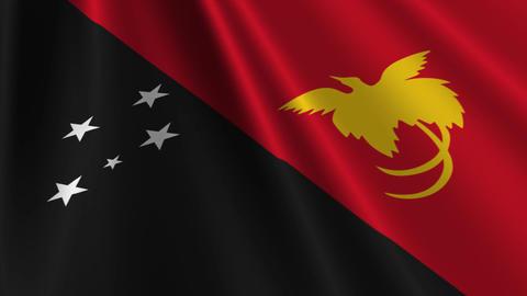 PapuaNewGuineaFlagLoop03 Stock Video Footage