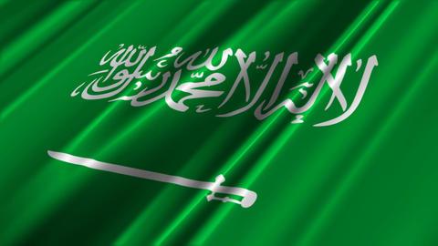 SaudiArabiaFlagLoop02 Stock Video Footage