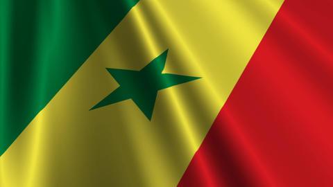 SenegalFlagLoop03 Stock Video Footage
