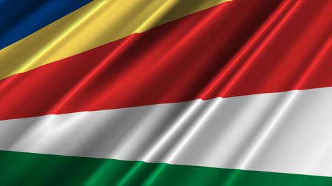 SeychellesFlagLoop02 Stock Video Footage