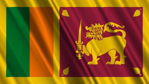 SriLankaFlagLoop01 Stock Video Footage