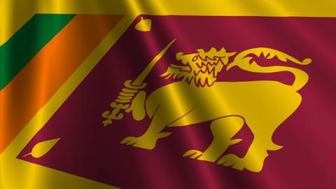 SriLankaFlagLoop03 Stock Video Footage