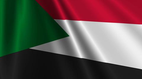 SudanFlagLoop03 Stock Video Footage