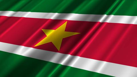 SurinameFlagLoop02 Stock Video Footage