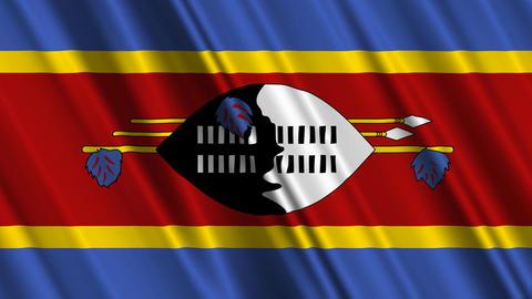 SwazilandFlagLoop01 Stock Video Footage