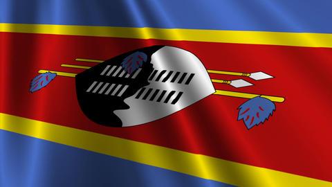 SwazilandFlagLoop03 Stock Video Footage