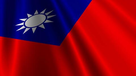TaiwanFlagLoop03 Stock Video Footage