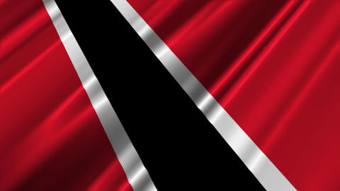 TrinidadAndTobagoFlagLoop02 Stock Video Footage